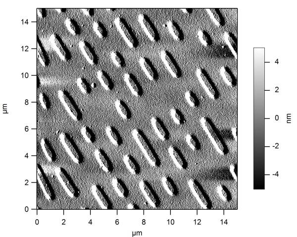 Компакт диск под микроскопом